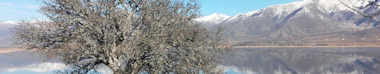 Agios Achillios island