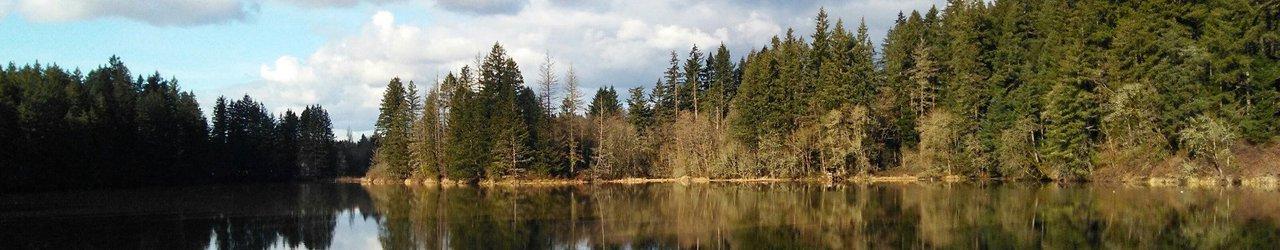 Lacamas Park Trail