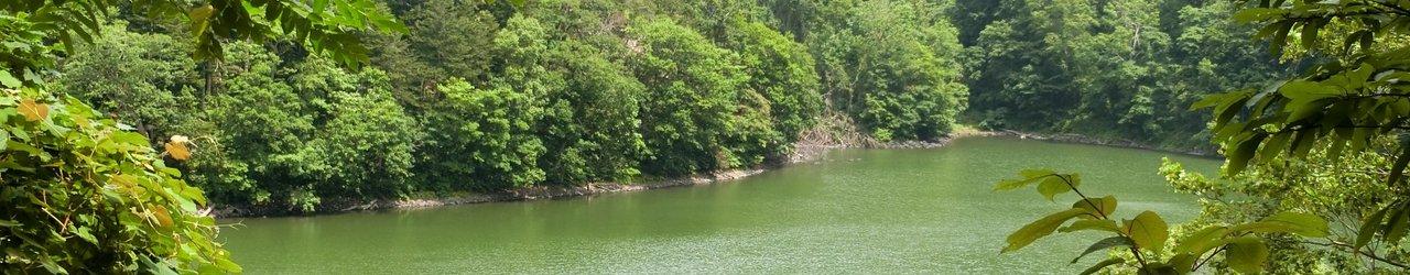 Lake Hangetsu Nature Park