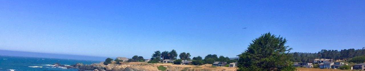 Walk On Beach Sea Ranch Access Trail