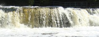 Sauble Falls Provincial Park