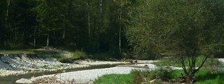 Winterthur Trail