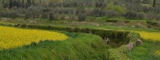 Parco Agricolo di Travalle