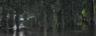 Pont-L'Eveque