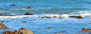 平磯白亜紀層
