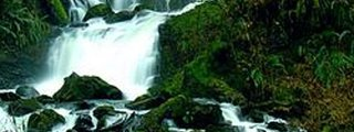 Lee Wooden Fishhawk Falls County Park