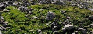 Col de la Madeleine Savoie