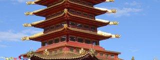 Pagoda Seven Days
