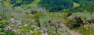 Snowmass Village Hiking Trails
