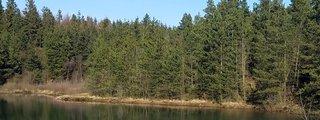 Naturlegepladsen I Momhoje