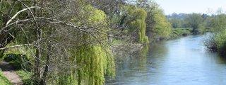 The Weir Garden