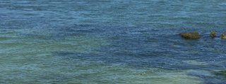 Coupon bight aquatic preserve tripadvisor