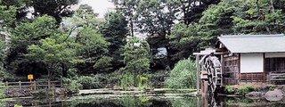 Nabeshima Shoto Park