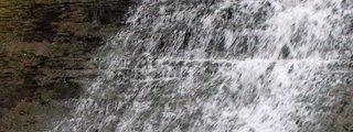 Tiffany Falls Conservation Area
