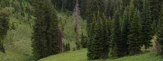 Teton Pass History Trail