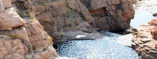 Kgaswane Nature Reserve