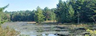 Six Mile Lake Provincial Park