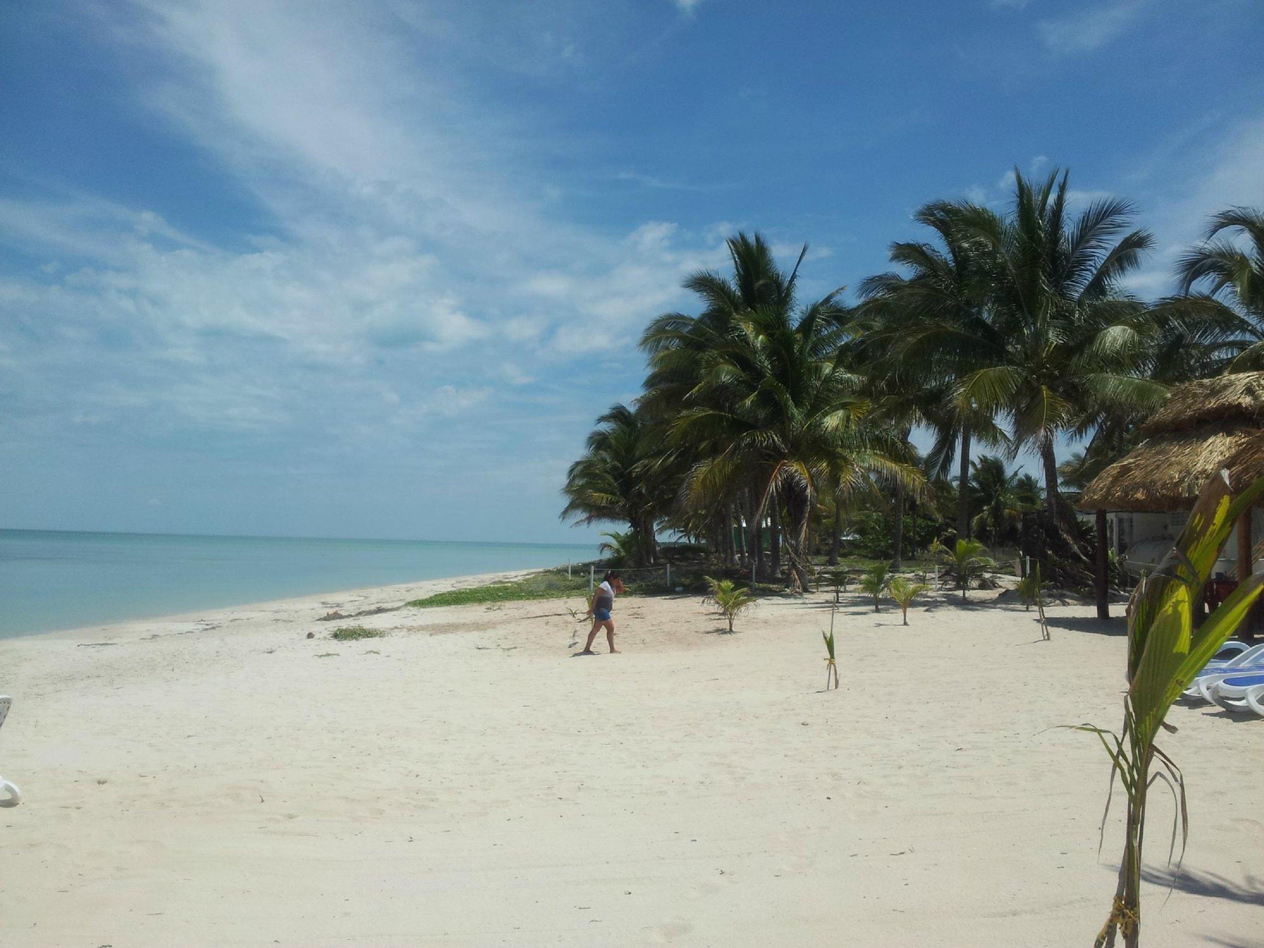 Sabancuy es un paraíso que te encantará.