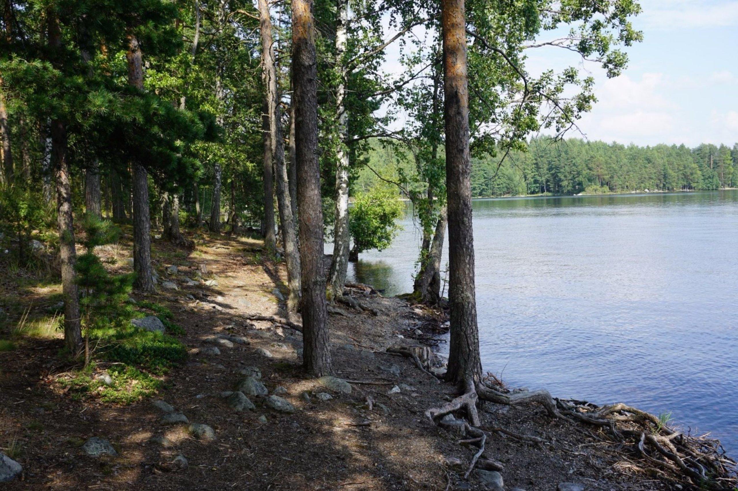 Pulkkilanharju Nature Trail Asikkala Suomi Arvostelut