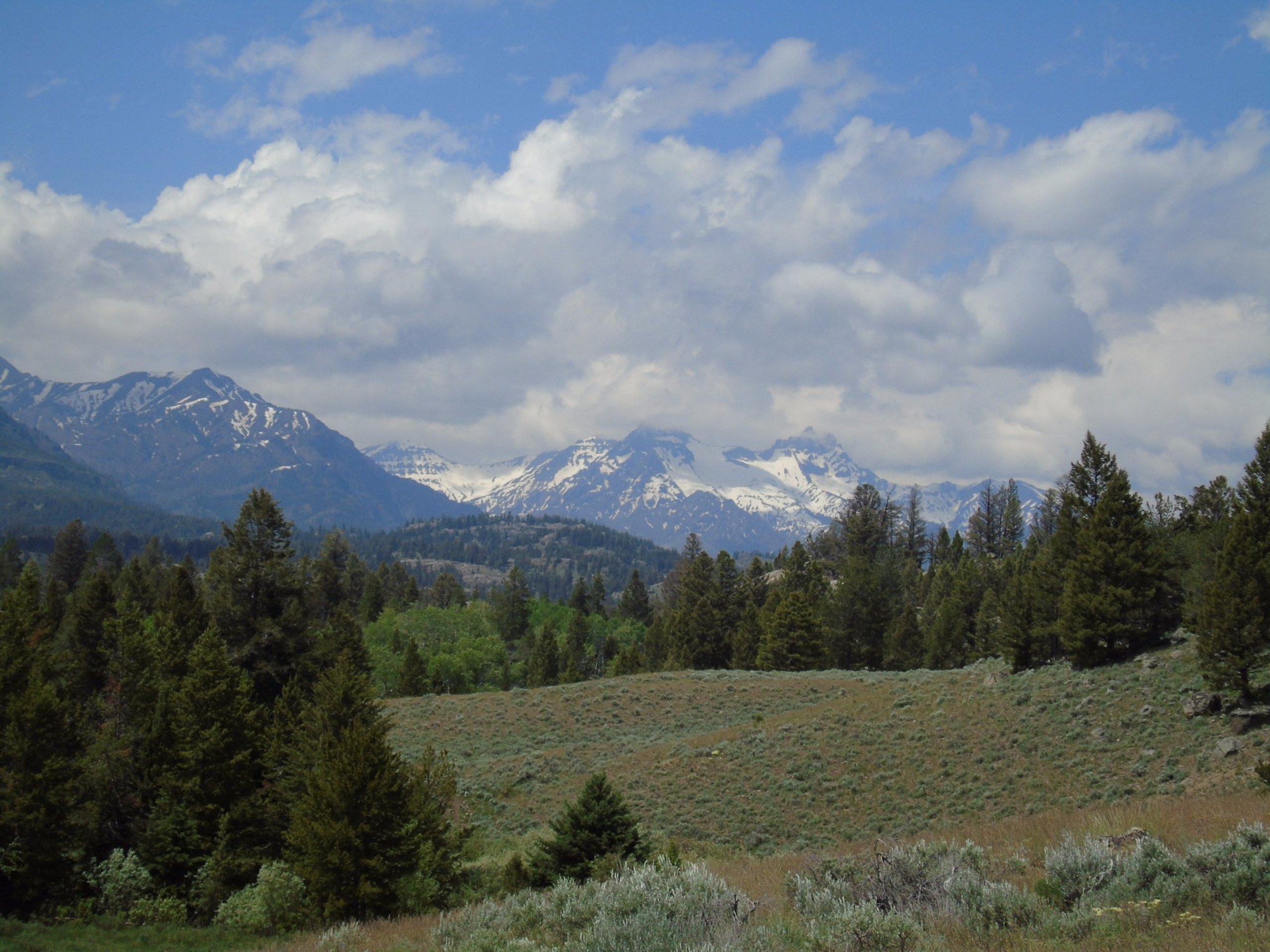 conservador pala Marcado  Clarks Fork Trail (Cooke City) - 2020 All You Need to Know BEFORE You Go  (with Photos) - Tripadvisor