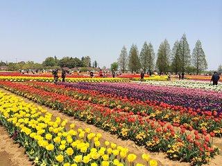 Akebonoyama Agricultural Park