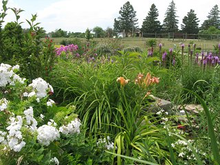 Harmony Arboretum