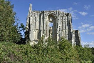 Ruines du Chateau Et De La Collegiale des Roches-Tranchelion