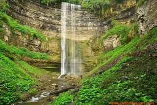 Waterfalls of Hamilton