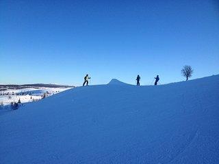 Vaset Skiheiser