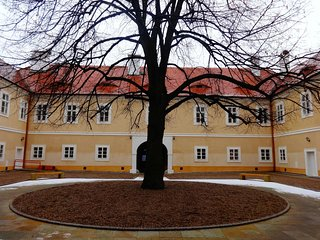 Castle Litvínov
