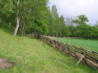 Lundens naturreservat