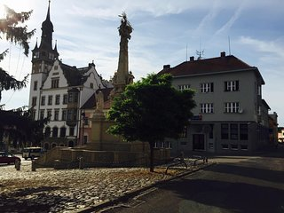 Kostel Svateho Vaclava a Svate Anezky Ceske