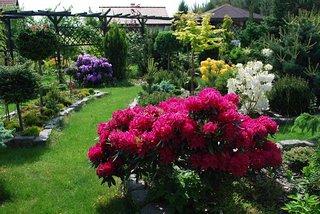 Ogród Hanutkowo