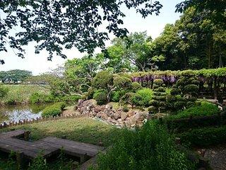 Morizu no Fuji Park