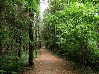 Piper Interpretive Trail