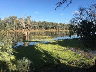 Cunnamulla Bushlands