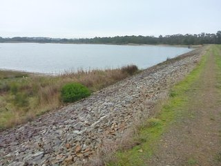 Bittern Reservoir