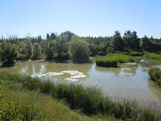Parc Departemental du Sausset