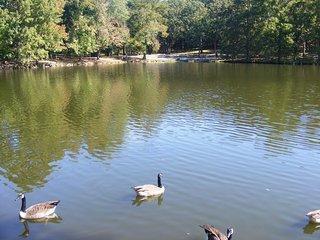 Dunnegan Memorial Park