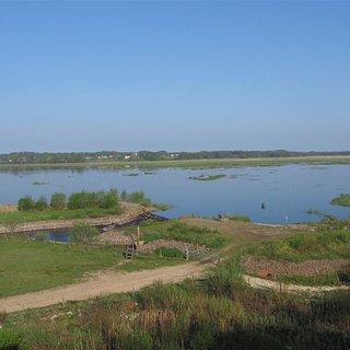 Draven naturreservat