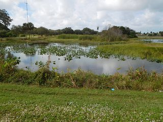 Snake Warrior's Island Natural Area