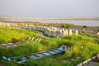 Li Shuei Fish Harbor