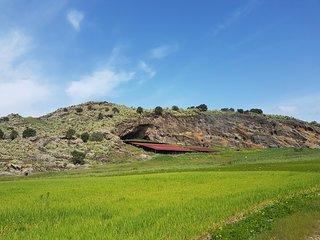 Area archeologica di Palike'
