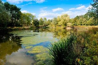 Parc de la Tuilerie