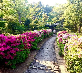 Okura Park