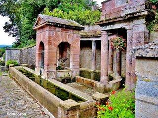 Fontaine du Cygne