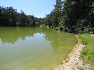 Rakitna Lake