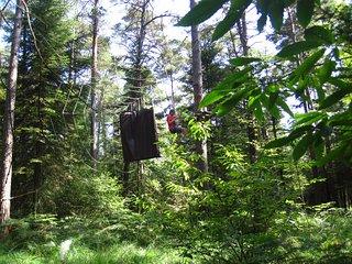 Parc de la Mi-Forêt