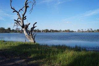 Wooroonook Lakes