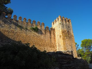 Aguzaderas Castle in El Coronil